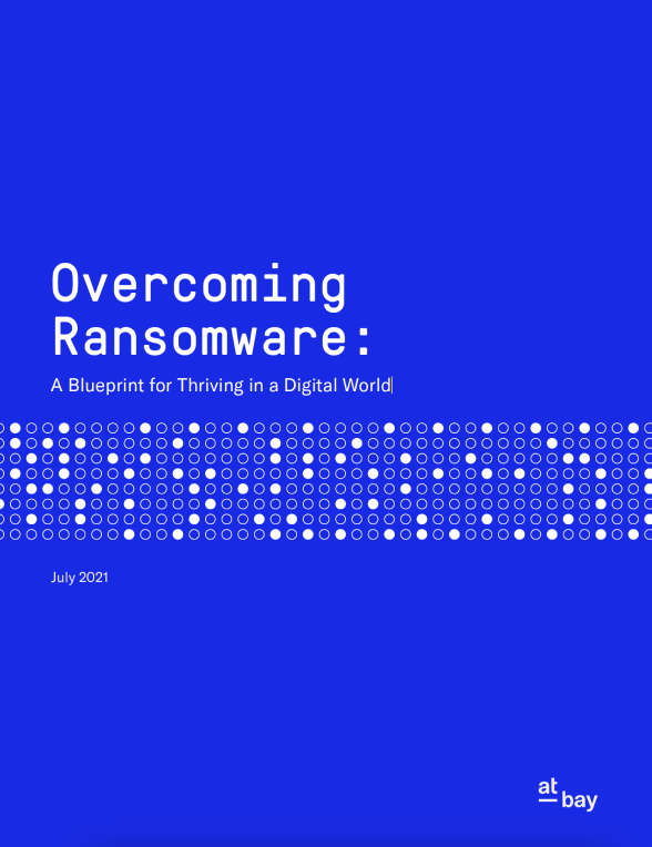 Get the Blueprint for Beating Ransomware